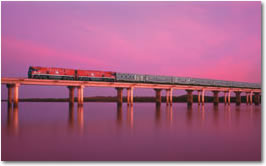 The Indian Pacific. One of many amazing Austalian trains CLICK HERE for more information