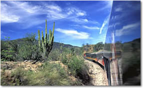 Click here for additional information about the first class Copper Canyon ChePe Train